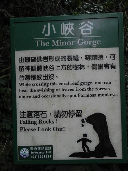 社頂自然公園 (8)