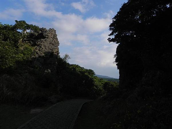 社頂自然公園 (11)