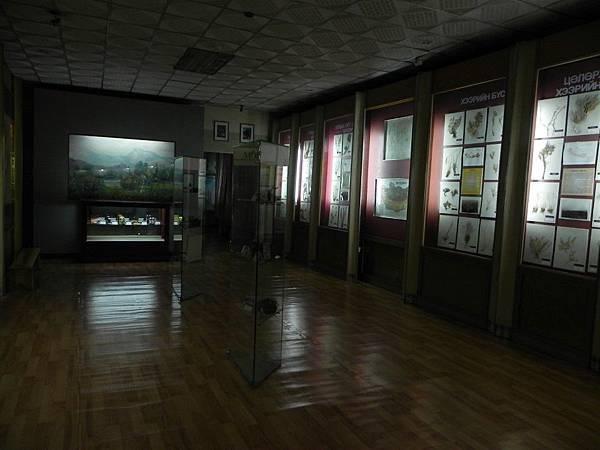 UB自然博物館 (28).JPG