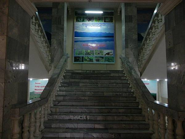 UB自然博物館 (31).JPG