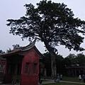 台南孔廟 (24).JPG
