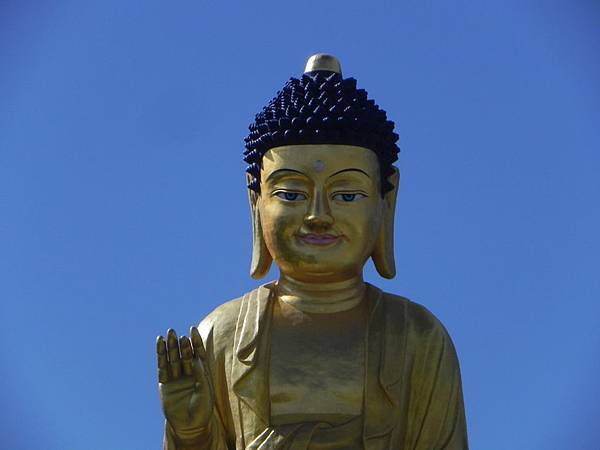釋迦牟尼佛像 (6).JPG