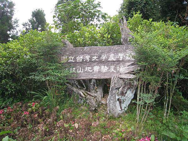 梅峰大門 (2).JPG