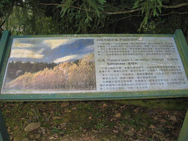 梅峰園區 (10).JPG