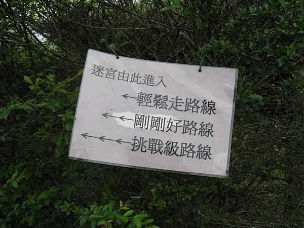 綠籬迷宮 (6).JPG