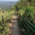 九九峰健行步道 (16).JPG
