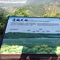 九九峰健行步道 (21).JPG