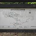 桂林村 (3).jpg