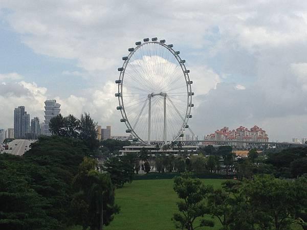 Singapore (2).JPG