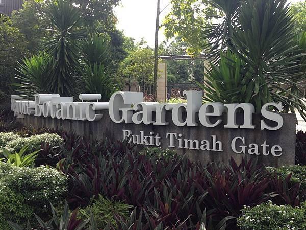 Singapore Botanic Gardens (1).JPG
