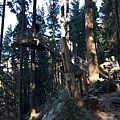 Tiki Trail and Skyline Gondola (10).JPG