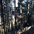 Tiki Trail and Skyline Gondola (11).JPG