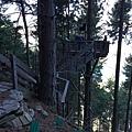 Tiki Trail and Skyline Gondola (15).JPG