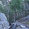 Tiki Trail and Skyline Gondola (24).JPG
