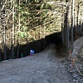 Tiki Trail and Skyline Gondola (26).JPG