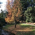 The Queenstown Gardens (1).JPG
