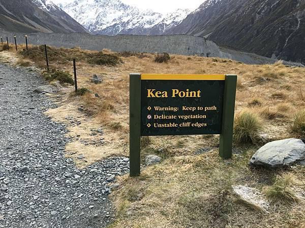 Kea Point Track (18).JPG