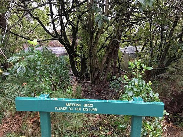 Wildlife Park (15).JPG