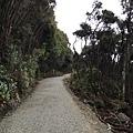 Lakeside Walk (3).JPG