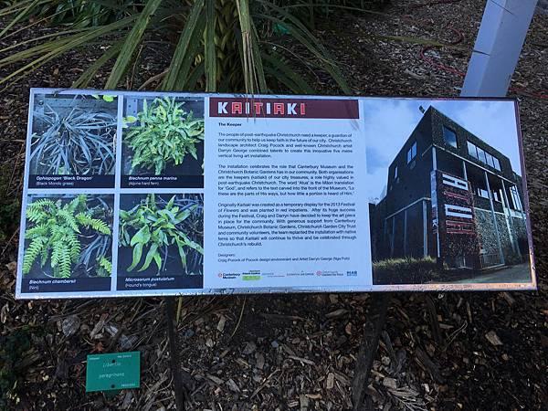 Christchurch Botanic Gardens (4).JPG