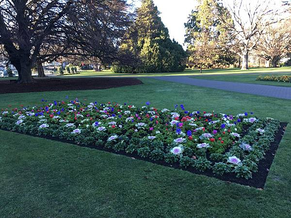 Christchurch Botanic Gardens (6).JPG