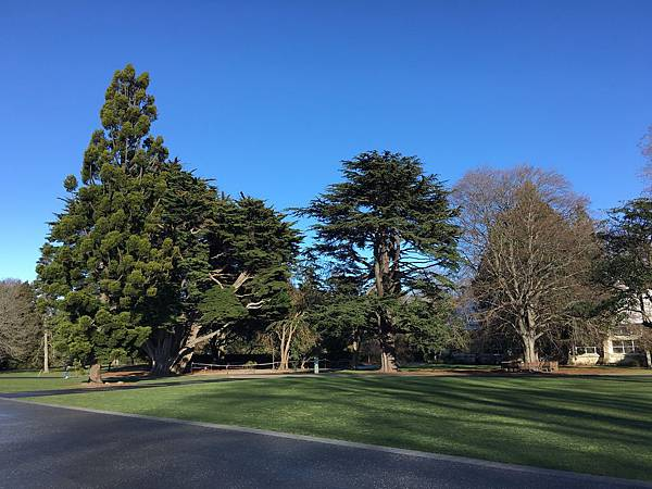 Christchurch Botanic Gardens (13).JPG