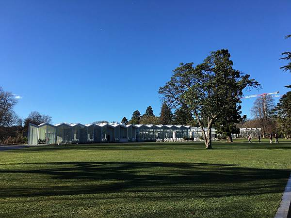 Christchurch Botanic Gardens (18).JPG