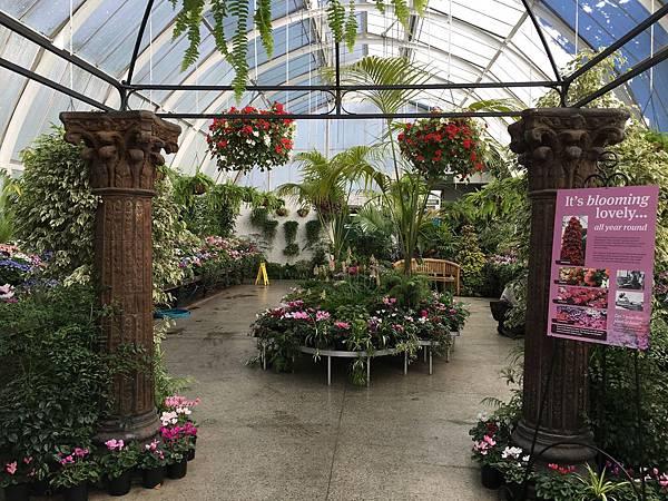 Christchurch Botanic Gardens (20).JPG