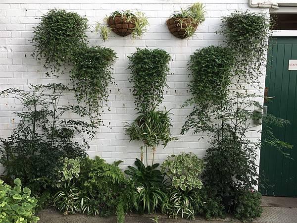 Christchurch Botanic Gardens (24).JPG