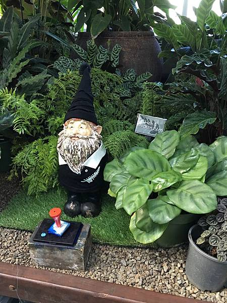 Christchurch Botanic Gardens (29).JPG