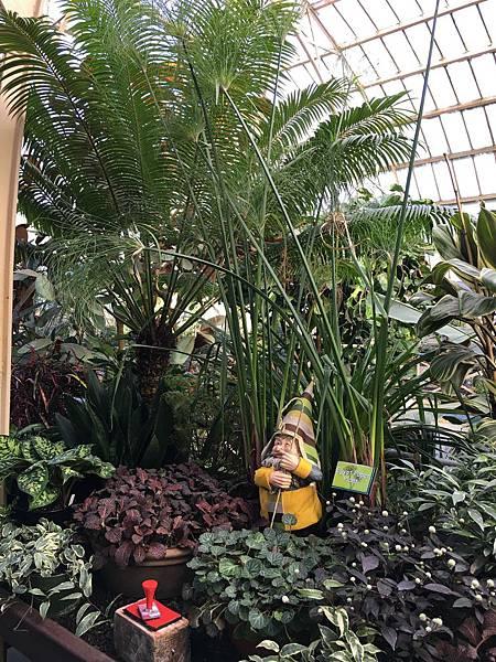 Christchurch Botanic Gardens (31).JPG