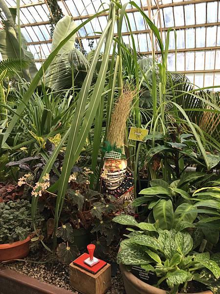Christchurch Botanic Gardens (32).JPG