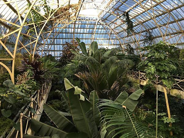 Christchurch Botanic Gardens (33).JPG