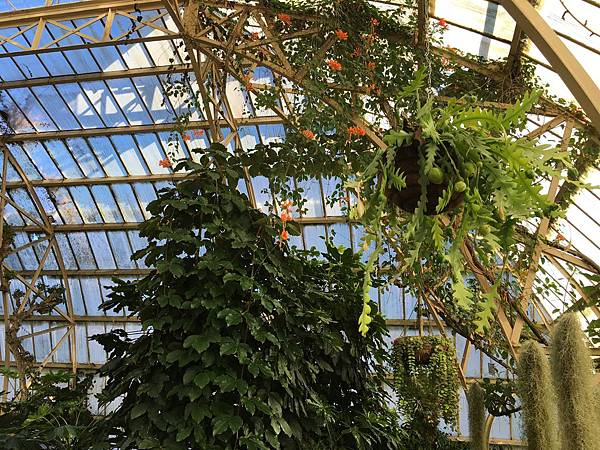 Christchurch Botanic Gardens (34).JPG