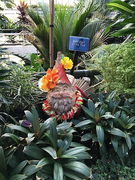 Christchurch Botanic Gardens (37).JPG
