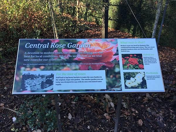 Christchurch Botanic Gardens (39).JPG