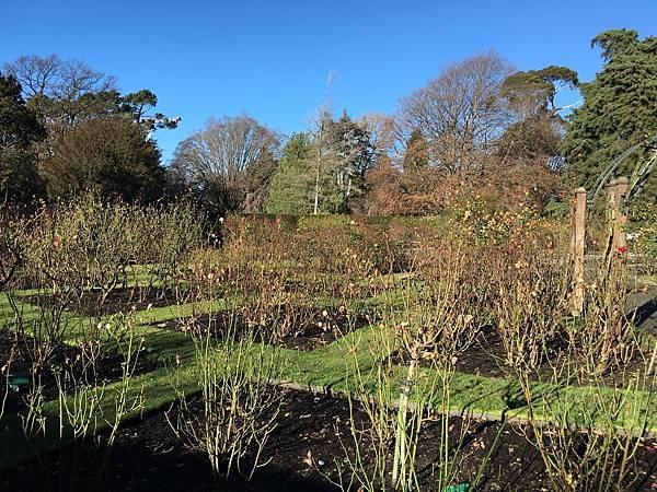 Christchurch Botanic Gardens (42).JPG