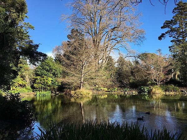 Christchurch Botanic Gardens (46).JPG