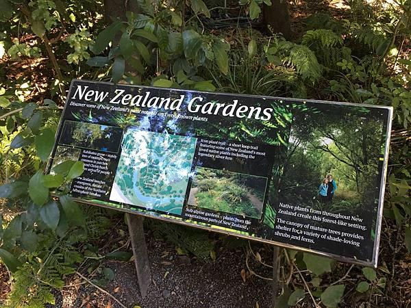 Christchurch Botanic Gardens (48).JPG