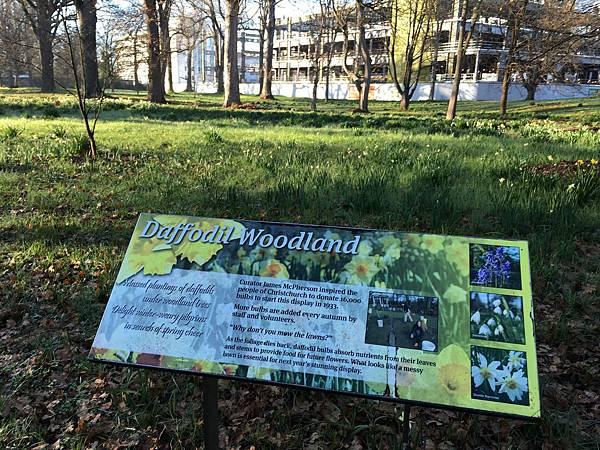 Christchurch Botanic Gardens (78).JPG