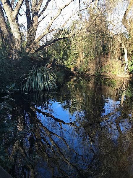Willowbank Wildlife Reserve (9).JPG