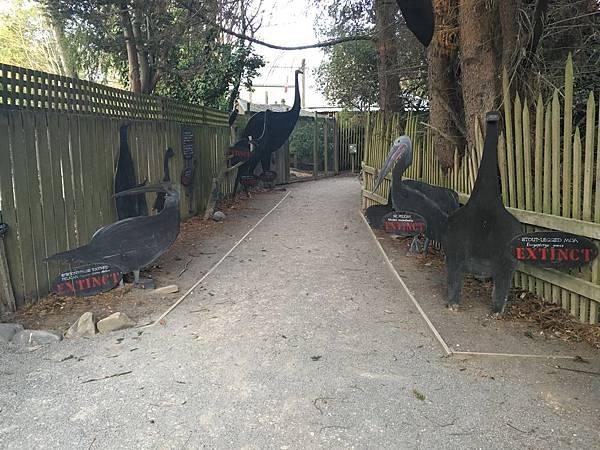 Willowbank Wildlife Reserve (55).JPG