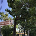 Parque Martí (17).JPG