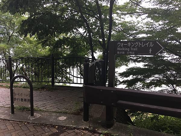 河口湖步道 (1).JPG