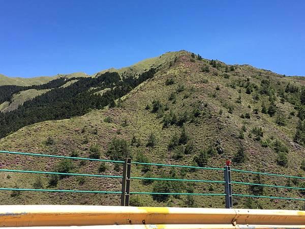合歡山北峰 (2).JPG