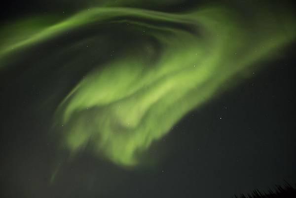 Aurora by D (3).jpg