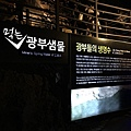 Gwangmyeong Cave (31).JPG
