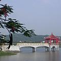 中正湖 (4).jpg