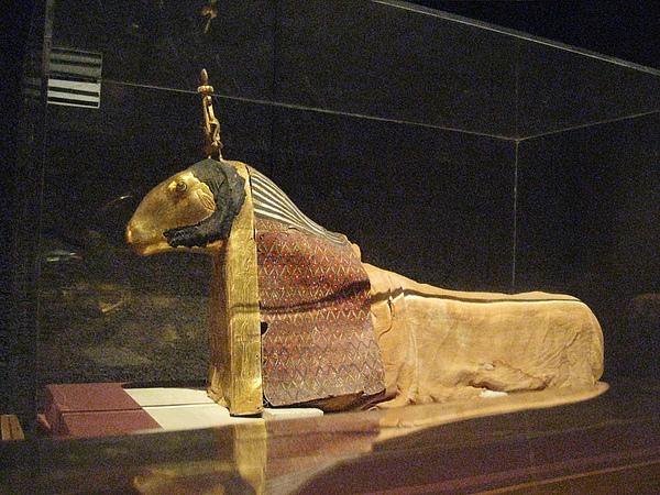Nubia Museum (9).jpg