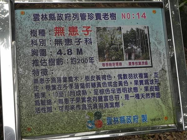 桂林村 (27).jpg